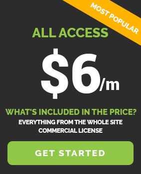 Widget Price Banner