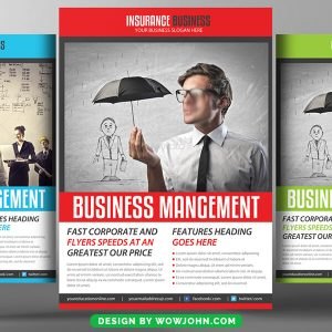 Information Technology Consultants Flyer Psd Template